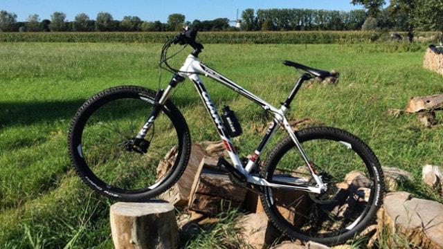 Mountainbike in der Natur auf Holzklötzen
