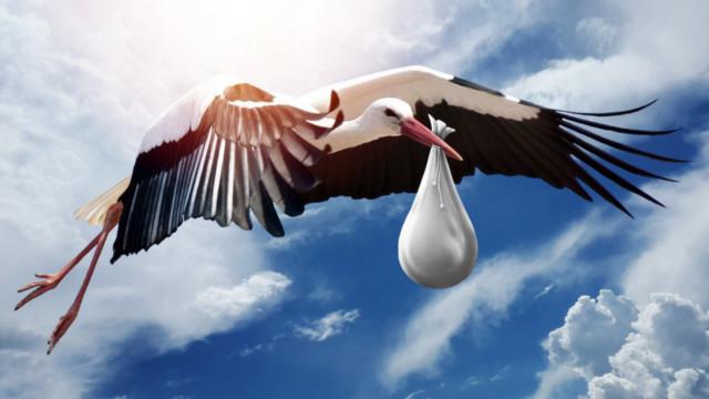 Storch bringt ein Baby im Schnabel
